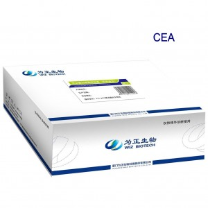 Diagnostic kit for Carcino-embryonic antigen ( Fluorescence immunochromatographic assay)
