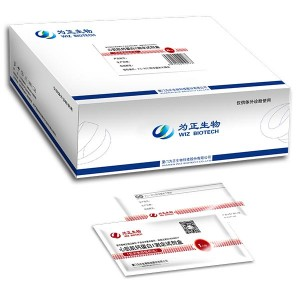 Diagnostic Kit for Isoenzyme MB of Creatine Kinase(fluorescence immunochromatographic assay)